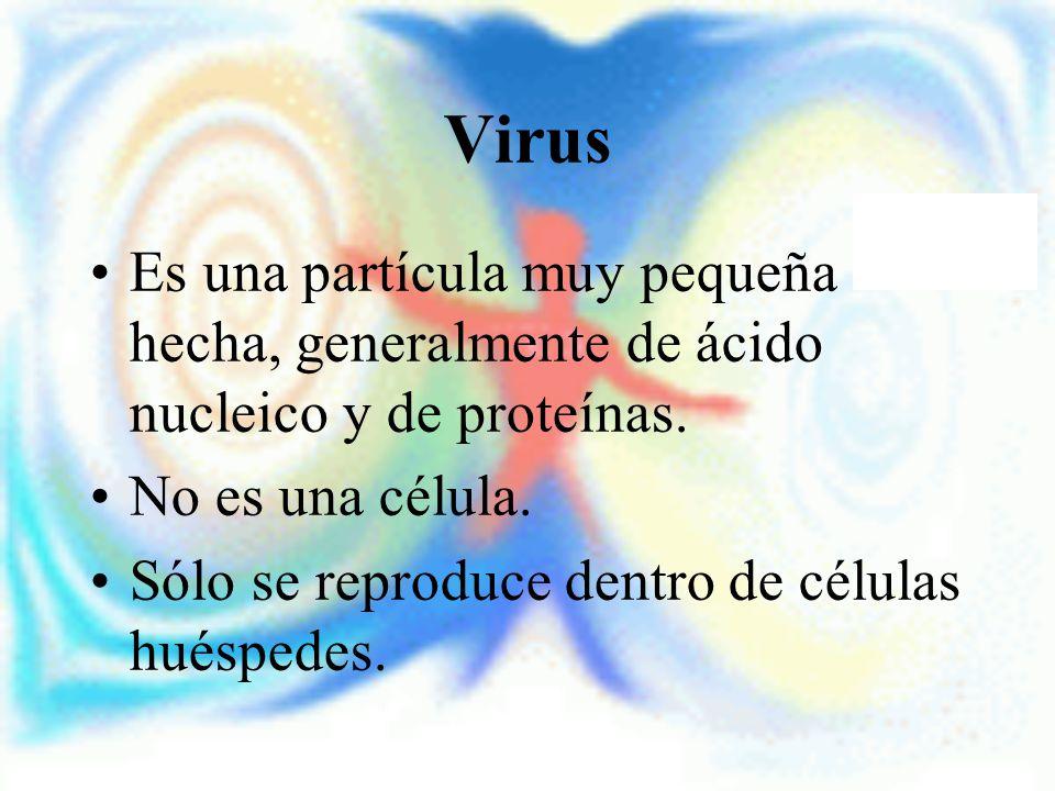Virus Es una partícula muy pequeña hecha, generalmente de ácido nucleico y de proteínas. No es una célula.