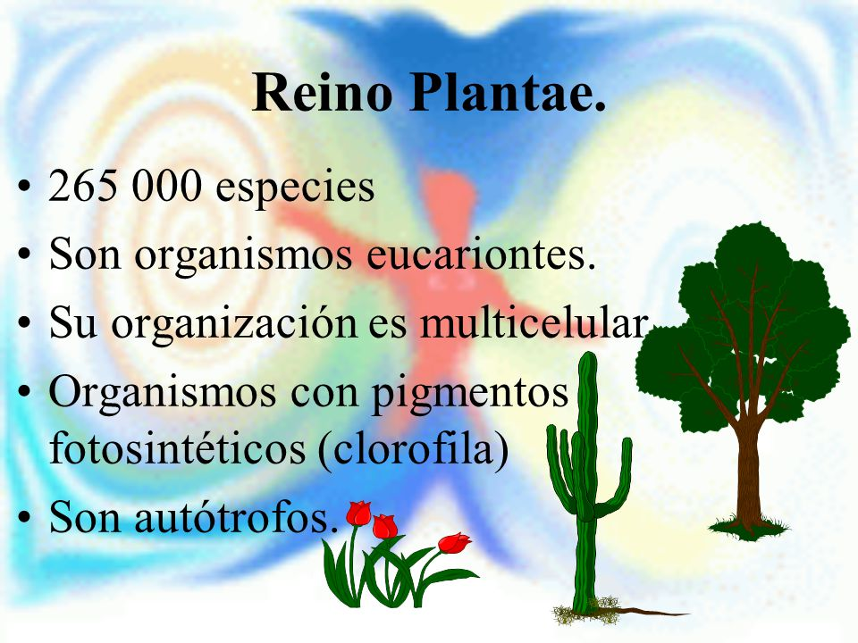 Reino Plantae. 265 000 especies Son organismos eucariontes.