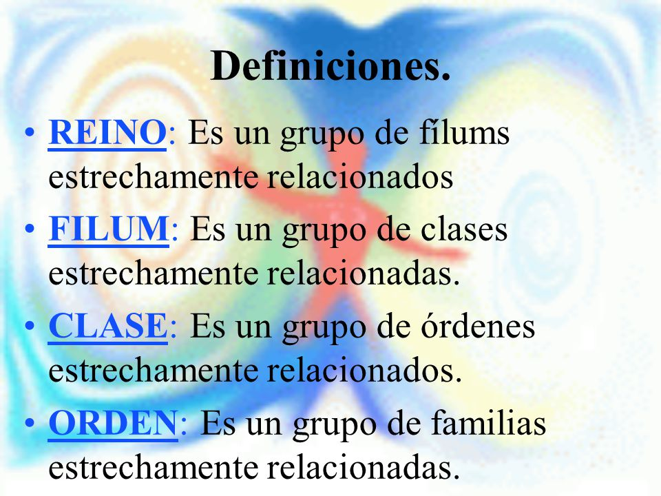 Definiciones. REINO: Es un grupo de fílums estrechamente relacionados