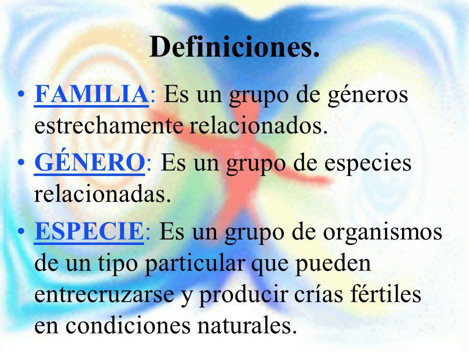 Definiciones. FAMILIA: Es un grupo de géneros estrechamente relacionados. GÉNERO: Es un grupo de especies relacionadas.