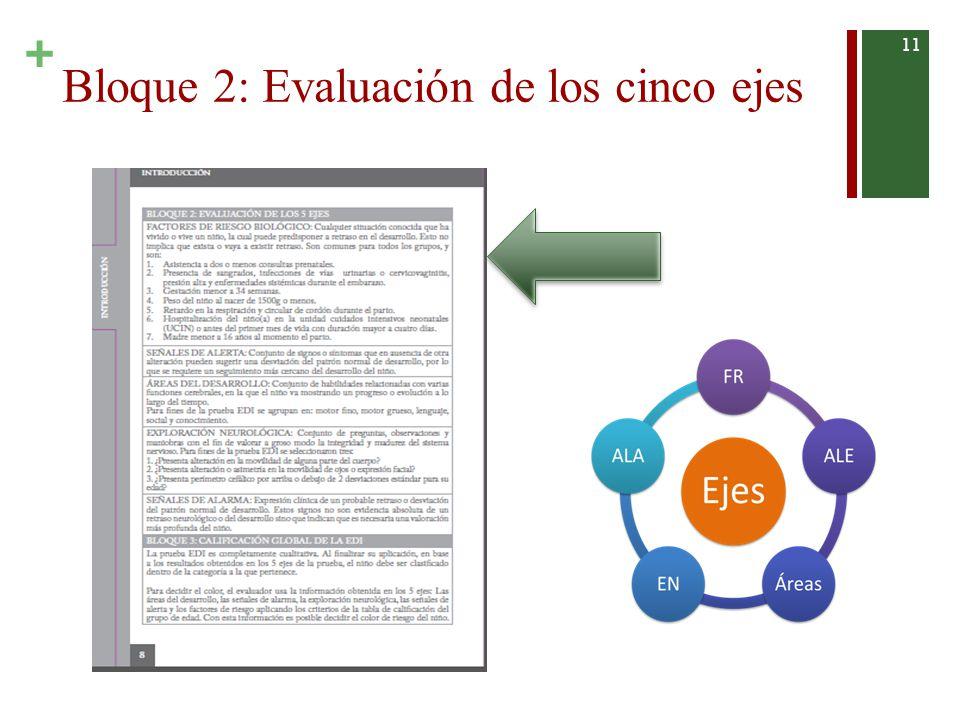 Bloque 2: Evaluación de los cinco ejes