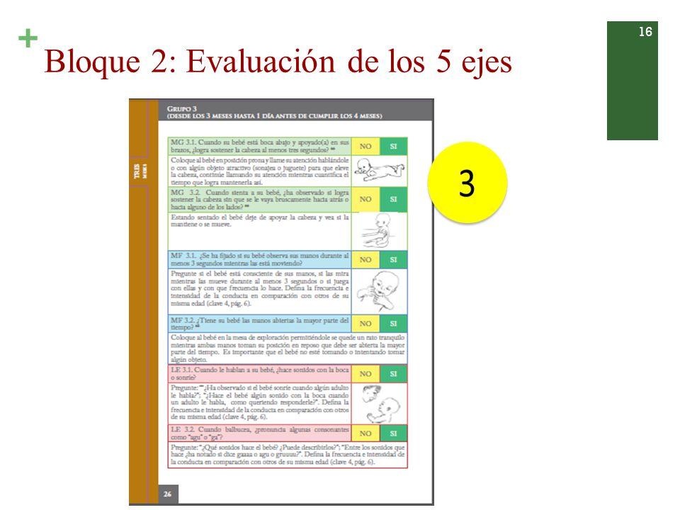 Bloque 2: Evaluación de los 5 ejes