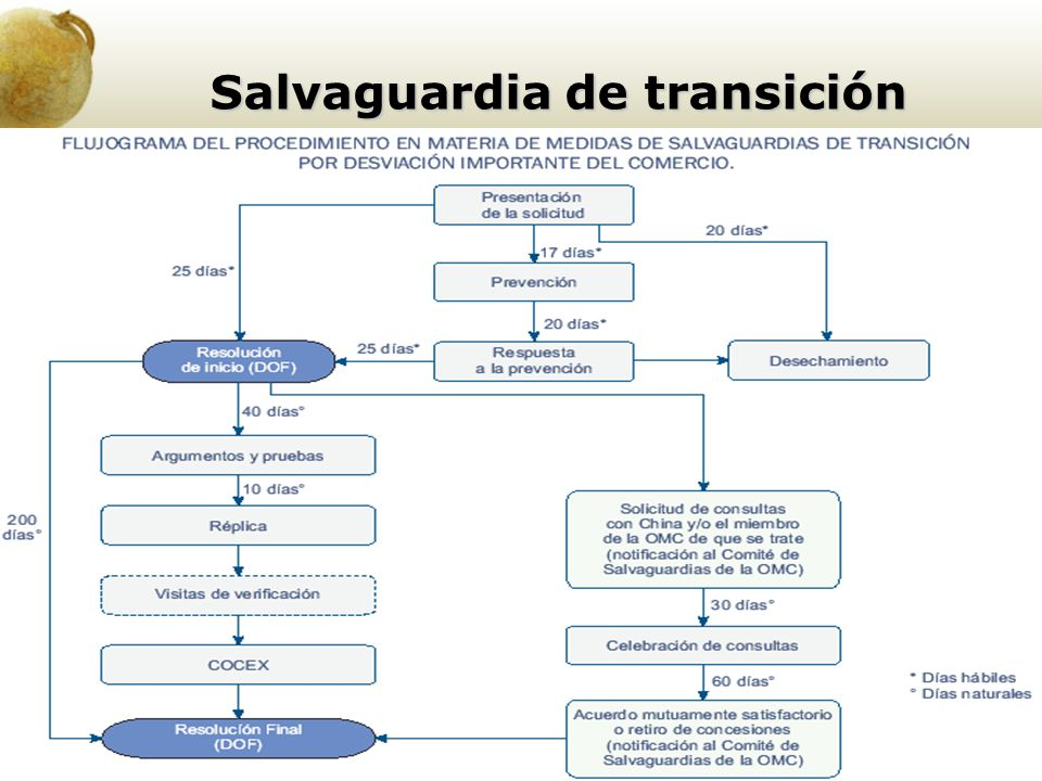 Salvaguardia de transición