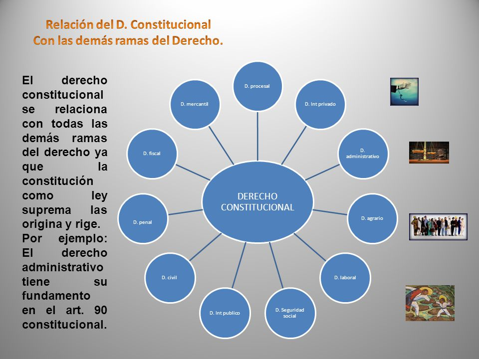 Relación del D. Constitucional Con las demás ramas del Derecho.