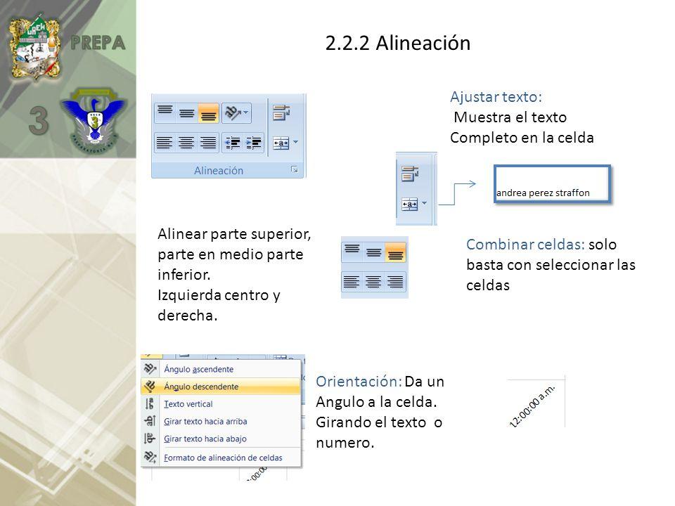 2.2.2 Alineación Ajustar texto: Muestra el texto Completo en la celda