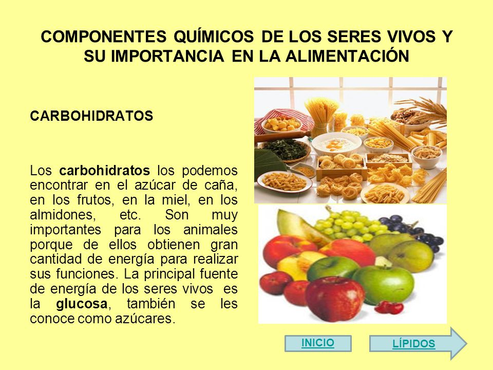 COMPONENTES QUÍMICOS DE LOS SERES VIVOS Y SU IMPORTANCIA EN LA ALIMENTACIÓN