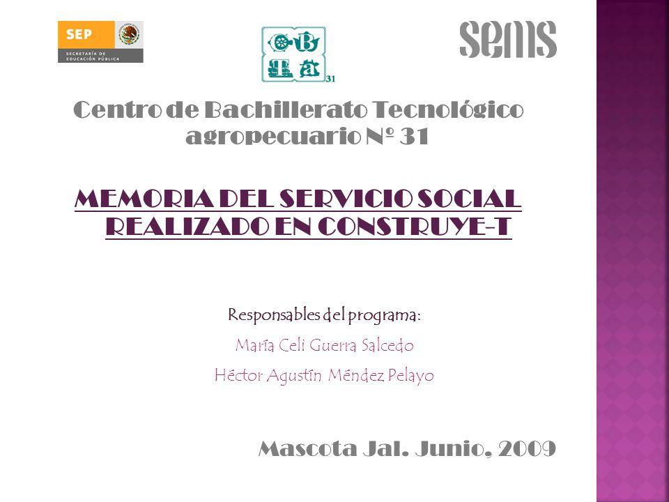 MEMORIA DEL SERVICIO SOCIAL REALIZADO EN CONSTRUYE-T