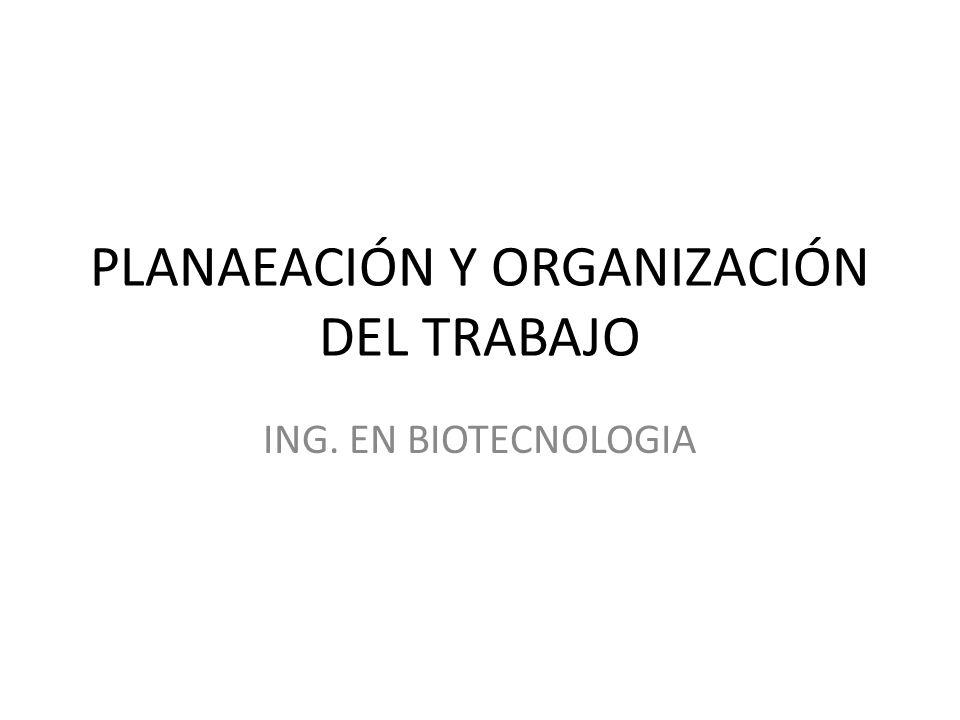 PLANAEACIÓN Y ORGANIZACIÓN DEL TRABAJO