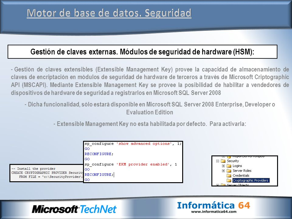 Motor de base de datos. Seguridad