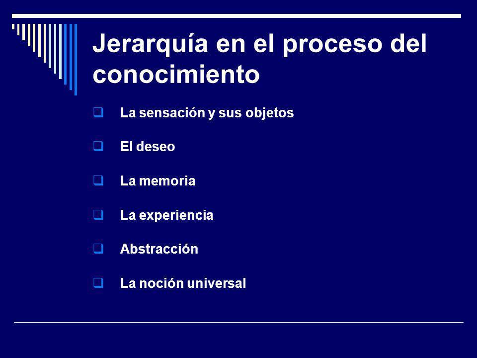 Jerarquía en el proceso del conocimiento