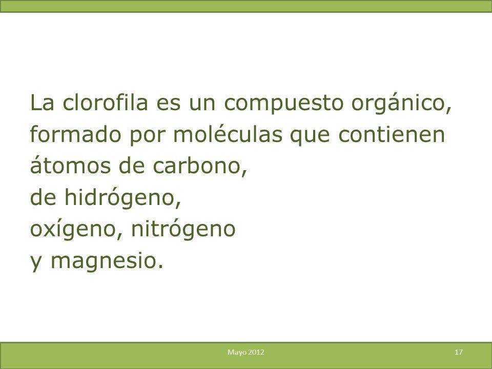 La clorofila es un compuesto orgánico, formado por moléculas que contienen átomos de carbono, de hidrógeno, oxígeno, nitrógeno y magnesio.