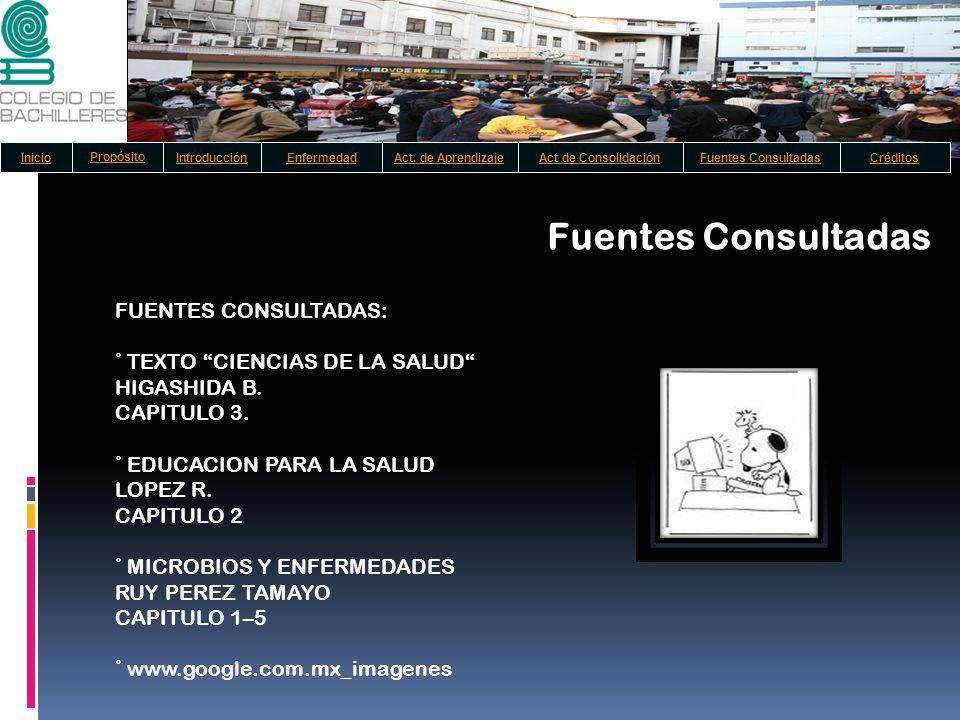 Fuentes Consultadas FUENTES CONSULTADAS:
