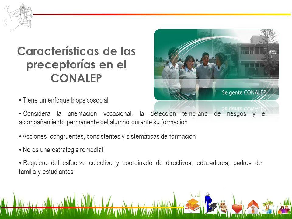 Características de las preceptorías en el CONALEP