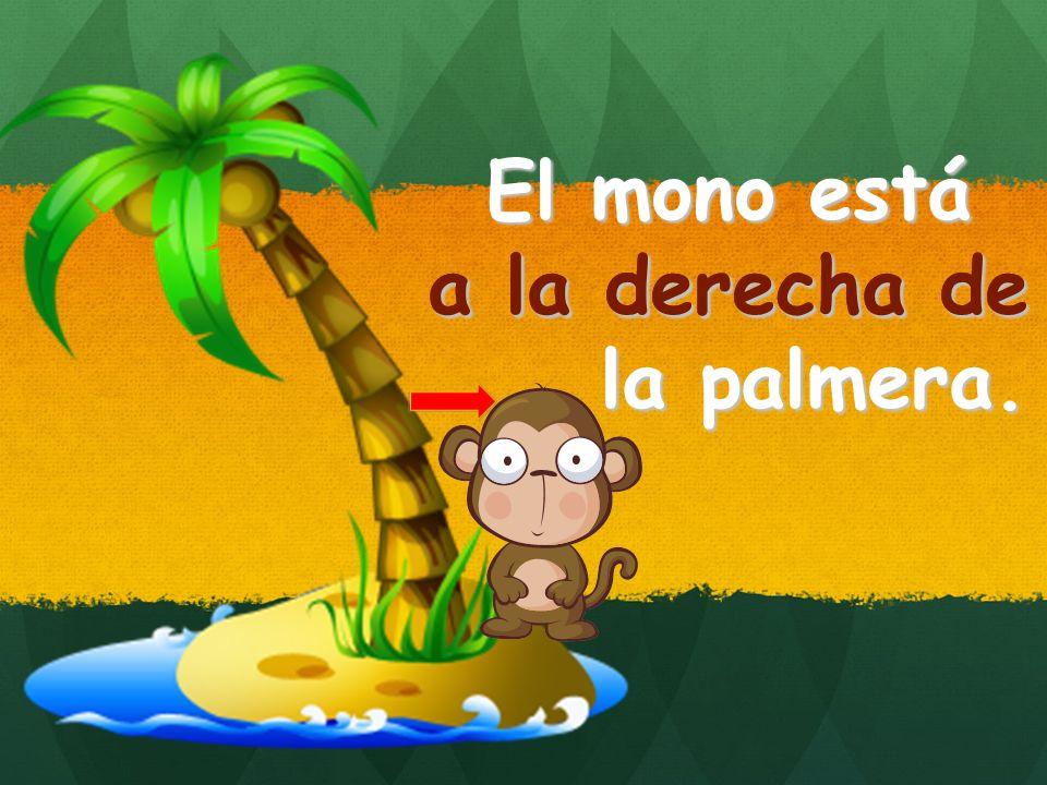 El mono está a la derecha de la palmera. a la derecha de