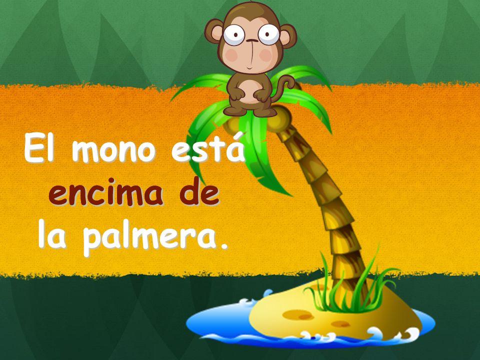 El mono está encima de la palmera. encima de