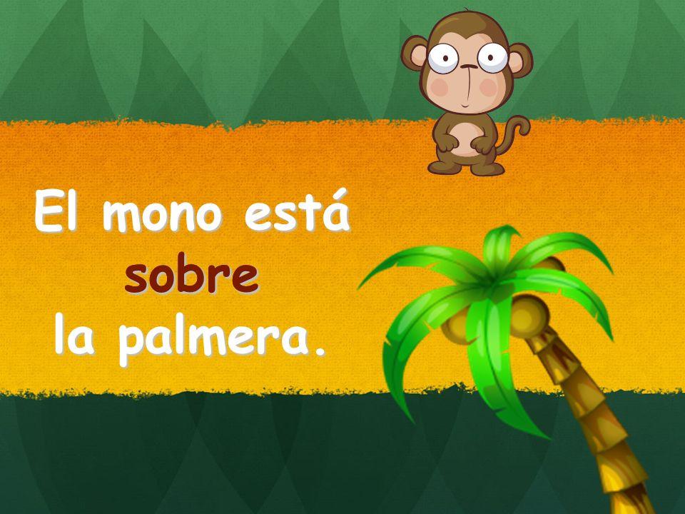 El mono está sobre la palmera. sobre