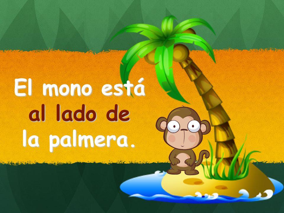 El mono está al lado de la palmera. al lado de