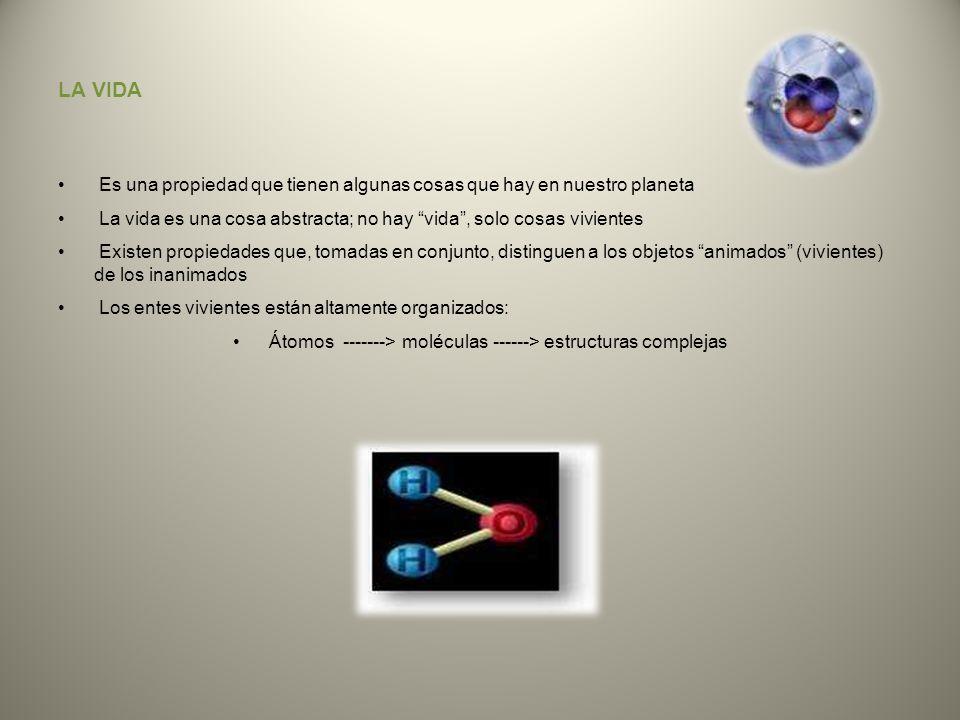 Átomos -------> moléculas ------> estructuras complejas