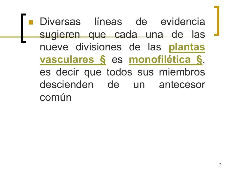 Diversas líneas de evidencia sugieren que cada una de las nueve divisiones de las plantas vasculares § es monofilética §, es decir que todos sus miembros descienden de un antecesor común