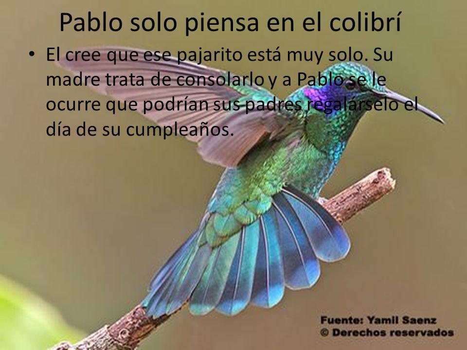 Pablo solo piensa en el colibrí