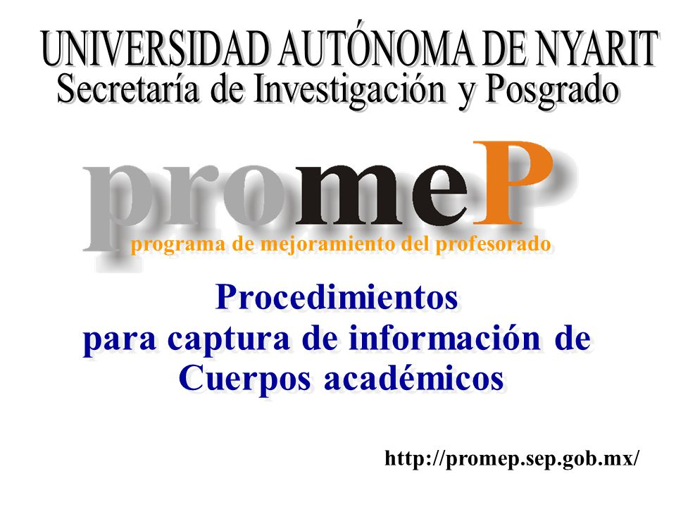 Procedimientos para captura de información de Cuerpos académicos