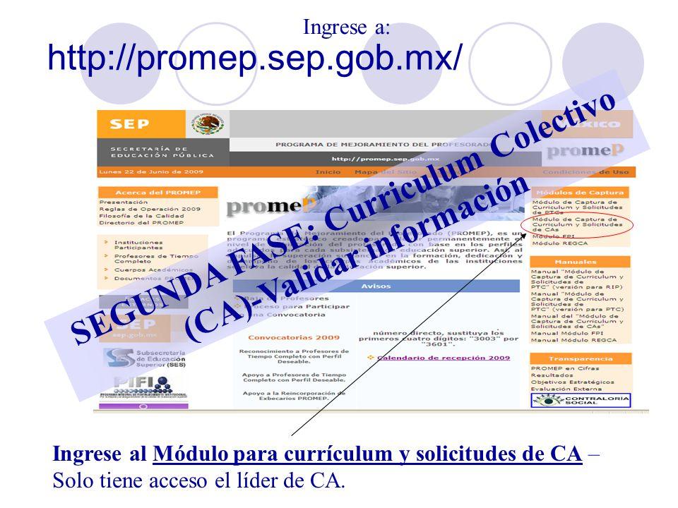 SEGUNDA FASE: Curriculum Colectivo (CA)-Validar información