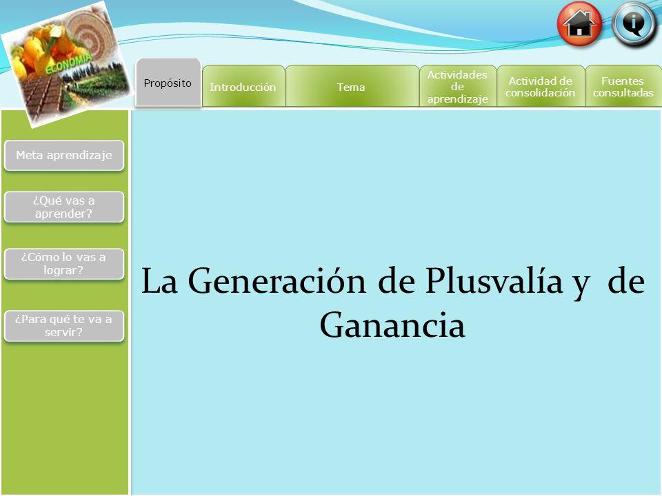 La Generación de Plusvalía y de Ganancia