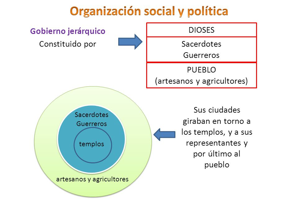 Organización social y política