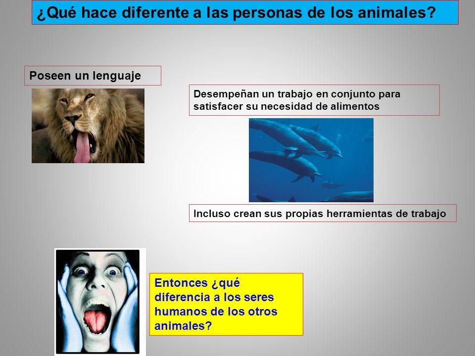 ¿Qué hace diferente a las personas de los animales