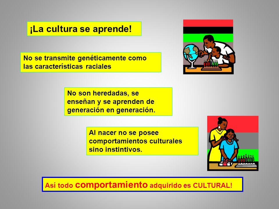 ¡La cultura se aprende! No se transmite genéticamente como las características raciales.