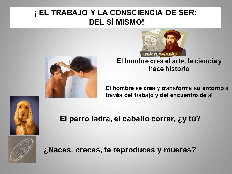 ¡ EL TRABAJO Y LA CONSCIENCIA DE SER: DEL SÍ MISMO!