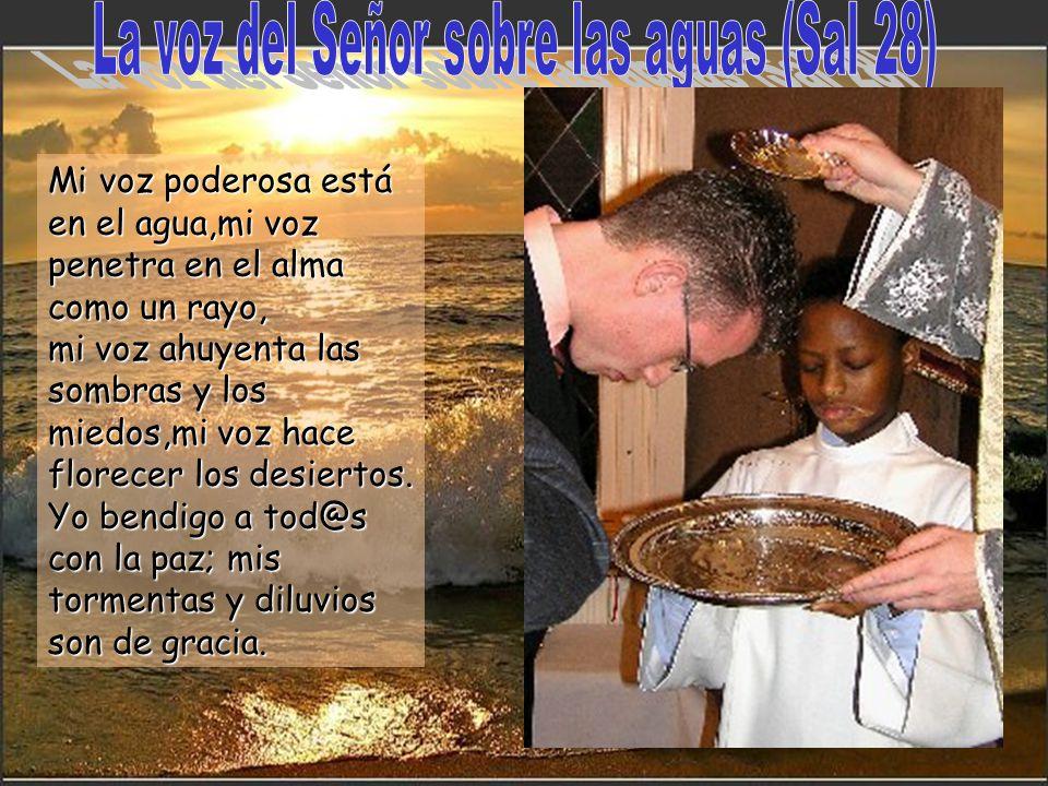 La voz del Señor sobre las aguas (Sal 28)