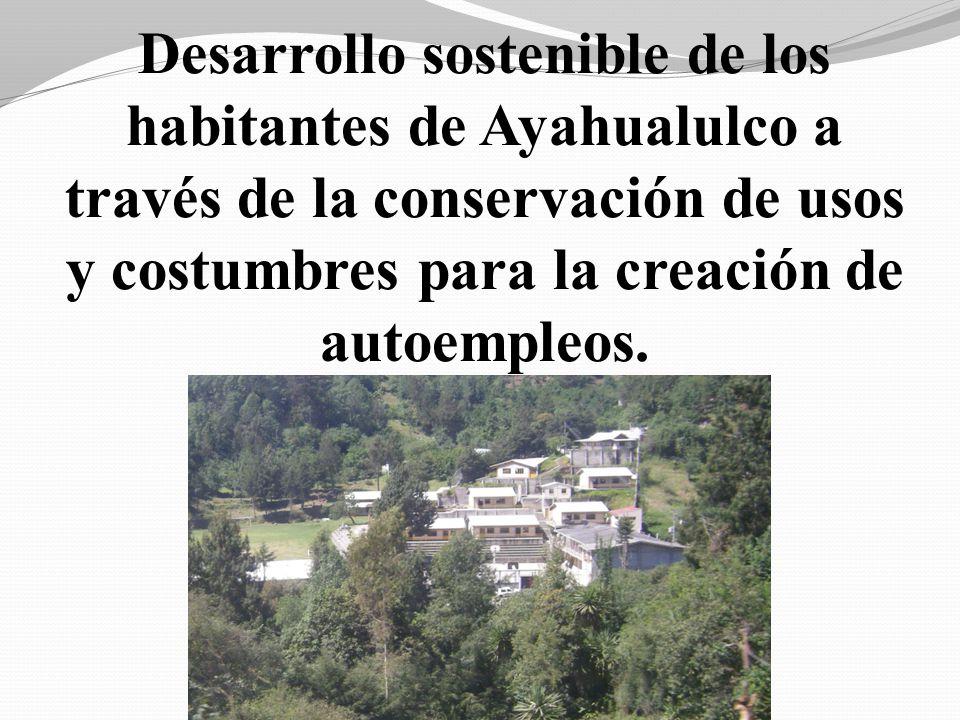 Desarrollo sostenible de los habitantes de Ayahualulco a través de la conservación de usos y costumbres para la creación de autoempleos.
