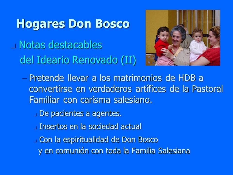 Hogares Don Bosco Notas destacables del Ideario Renovado (II)