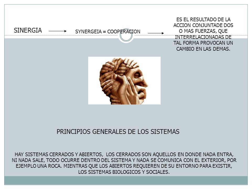 PRINCIPIOS GENERALES DE LOS SISTEMAS