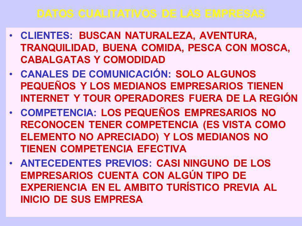 DATOS CUALITATIVOS DE LAS EMPRESAS