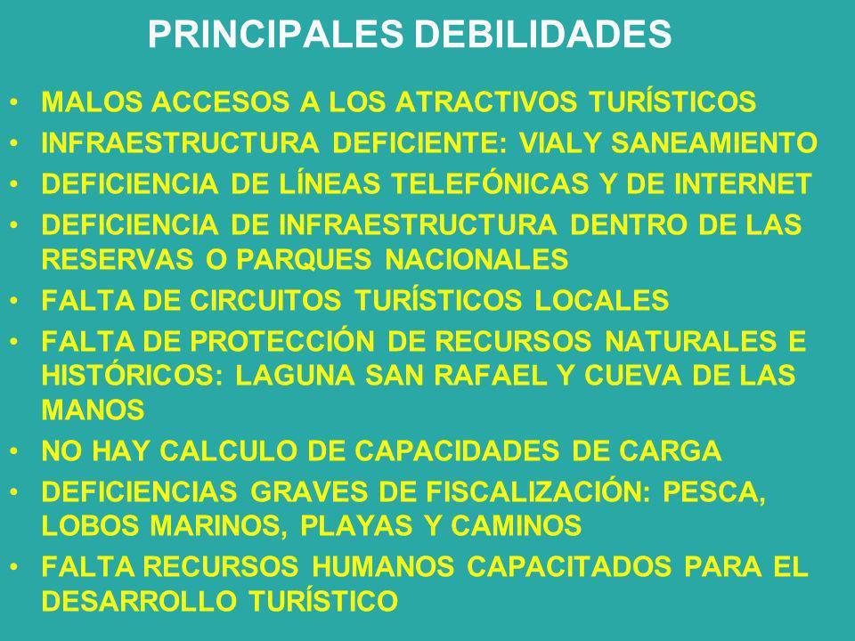 PRINCIPALES DEBILIDADES