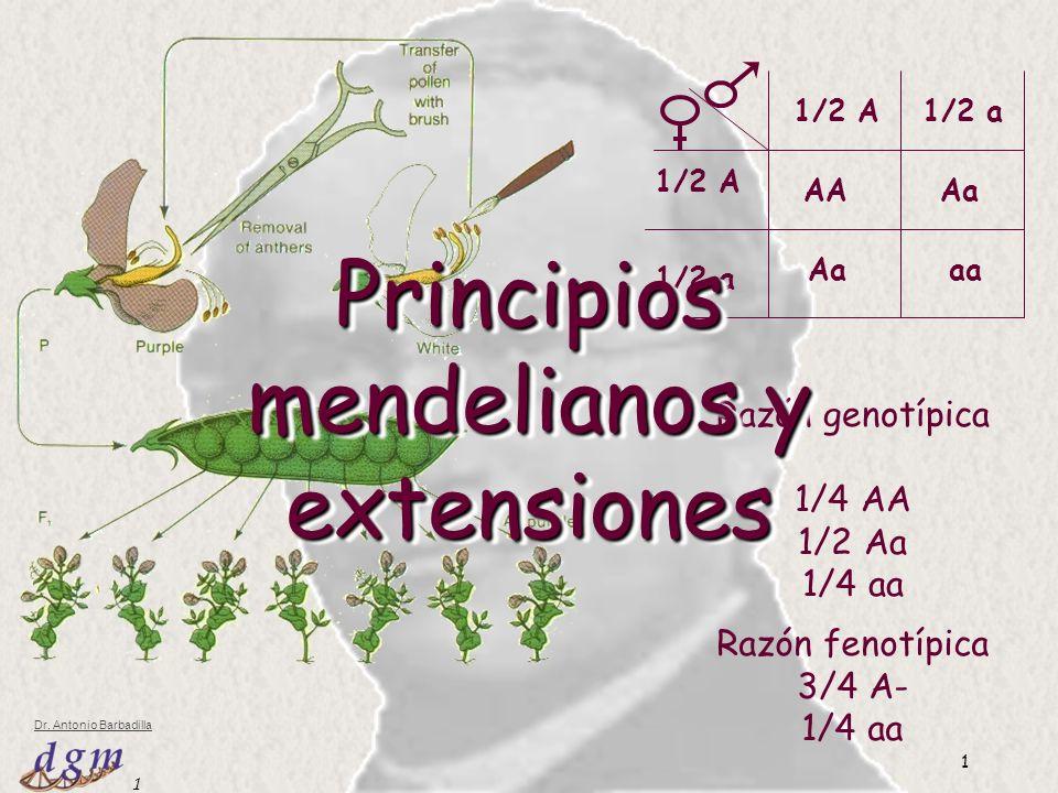 Principios mendelianos y extensiones
