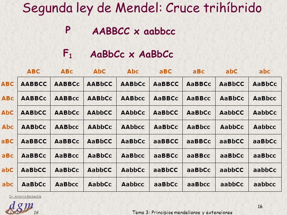 Segunda ley de Mendel: Cruce trihíbrido