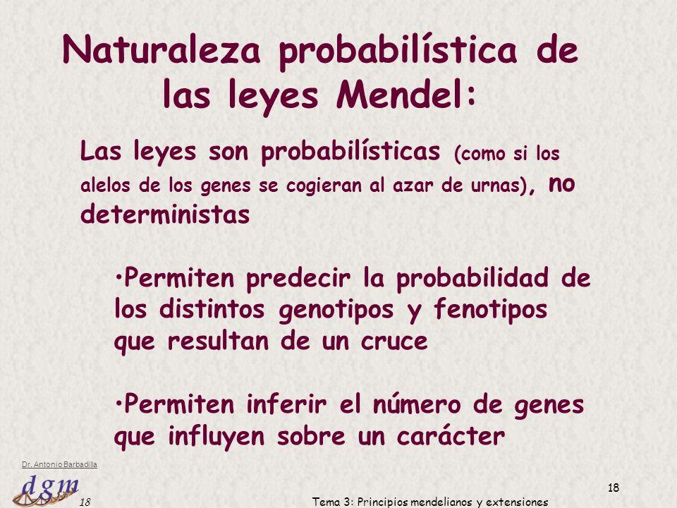 Naturaleza probabilística de las leyes Mendel: