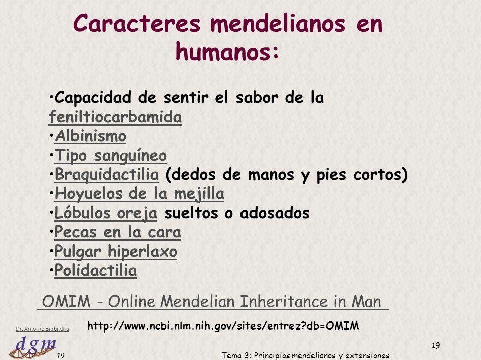 Caracteres mendelianos en humanos: