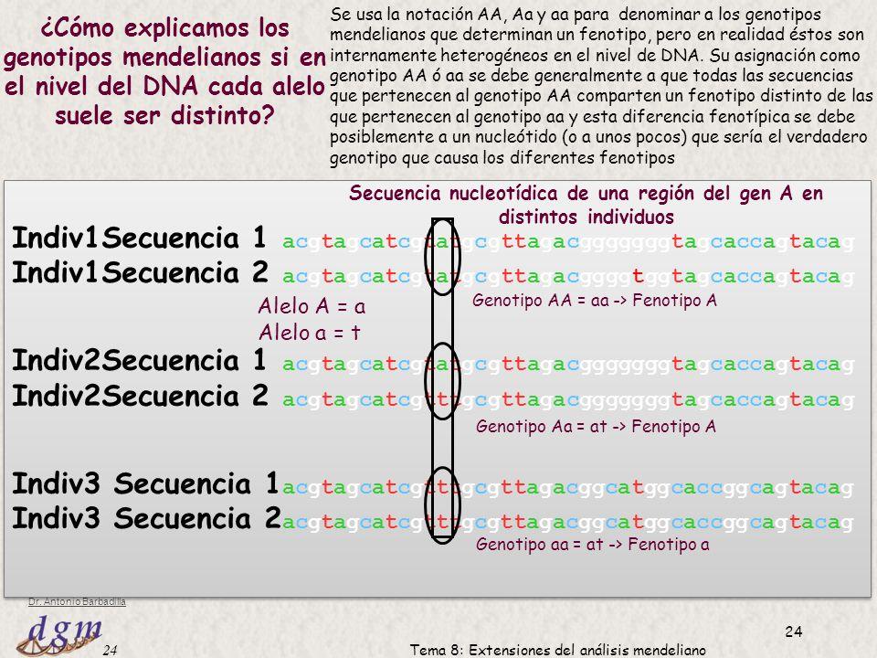 Secuencia nucleotídica de una región del gen A en distintos individuos