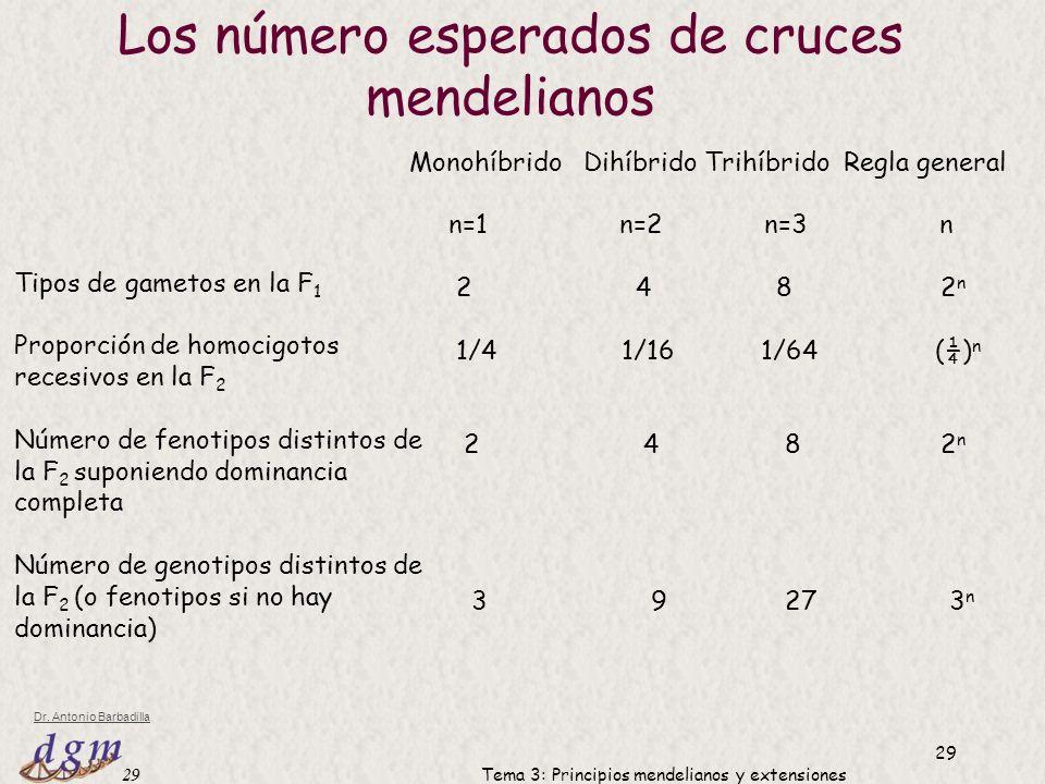 Los número esperados de cruces mendelianos