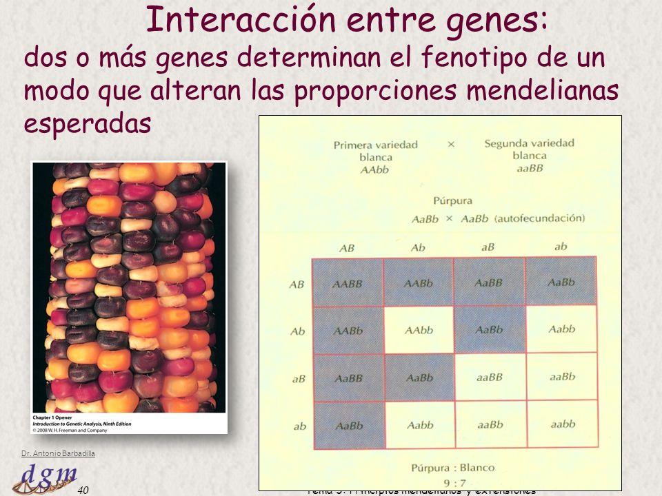 Interacción entre genes: