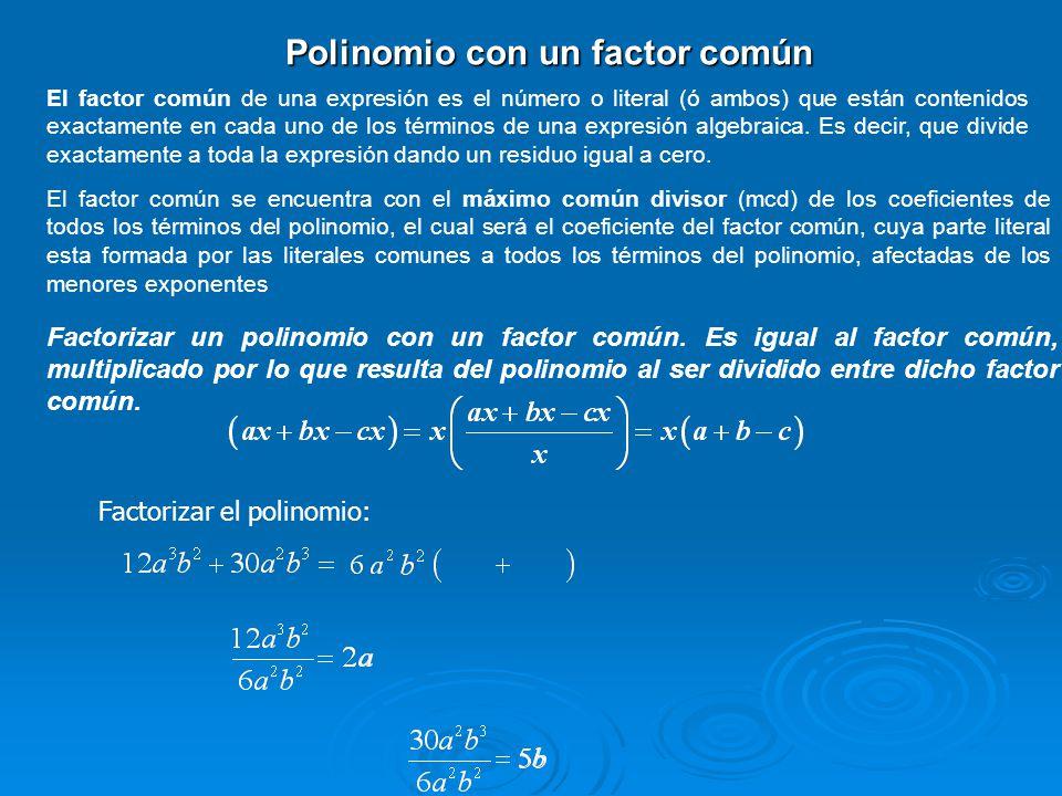 Polinomio con un factor común