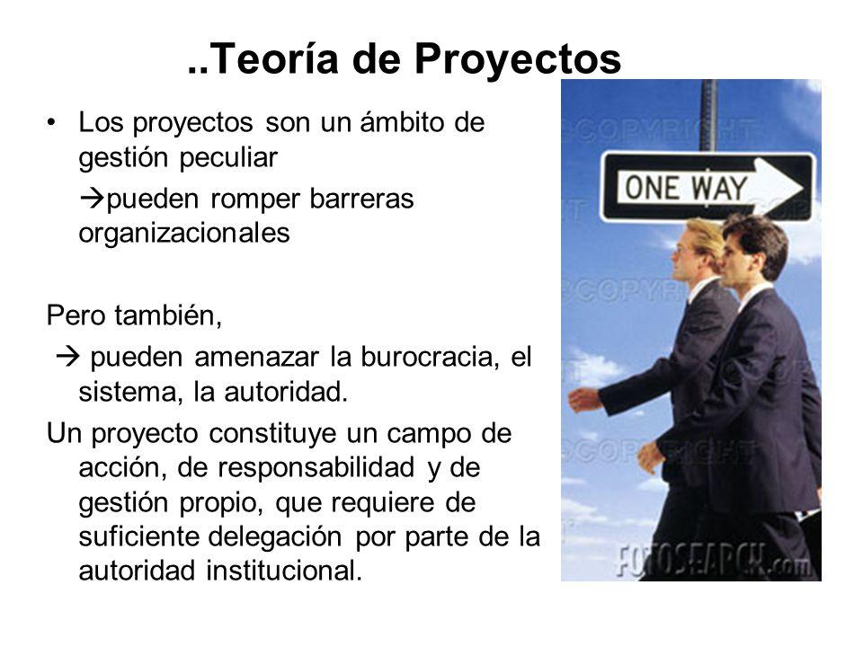 ..Teoría de Proyectos Los proyectos son un ámbito de gestión peculiar
