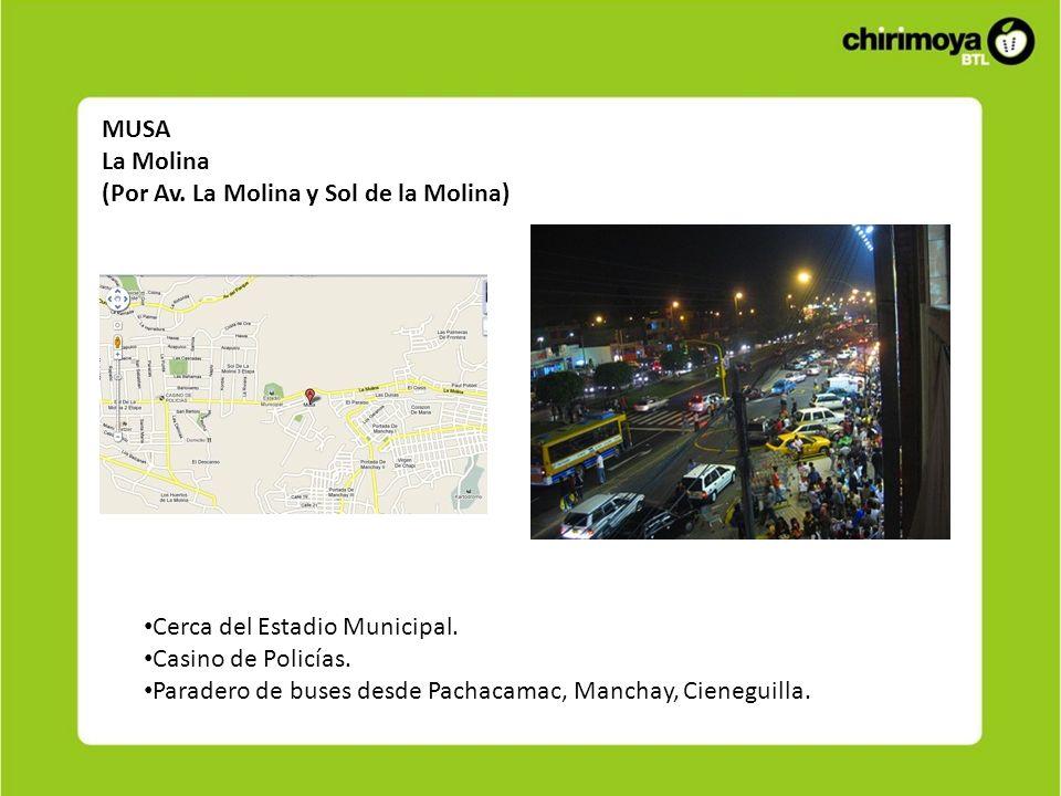 MUSALa Molina. (Por Av. La Molina y Sol de la Molina) Cerca del Estadio Municipal. Casino de Policías.