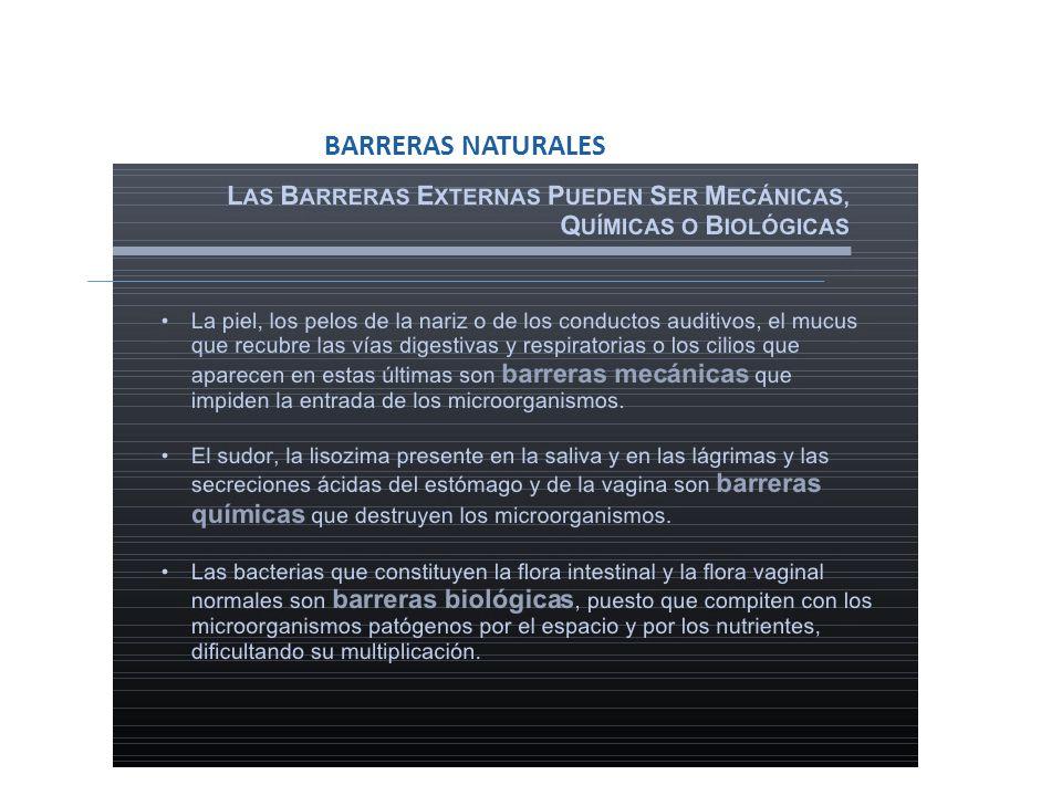 BARRERAS NATURALES BARRERAS NATURALES