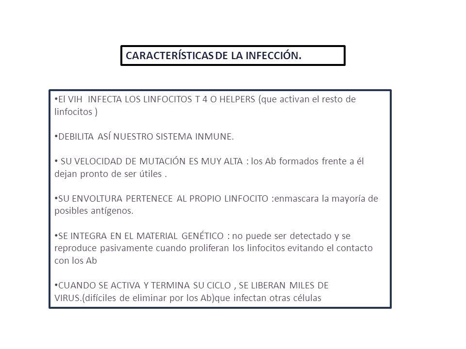 CARACTERÍSTICAS DE LA INFECCIÓN.