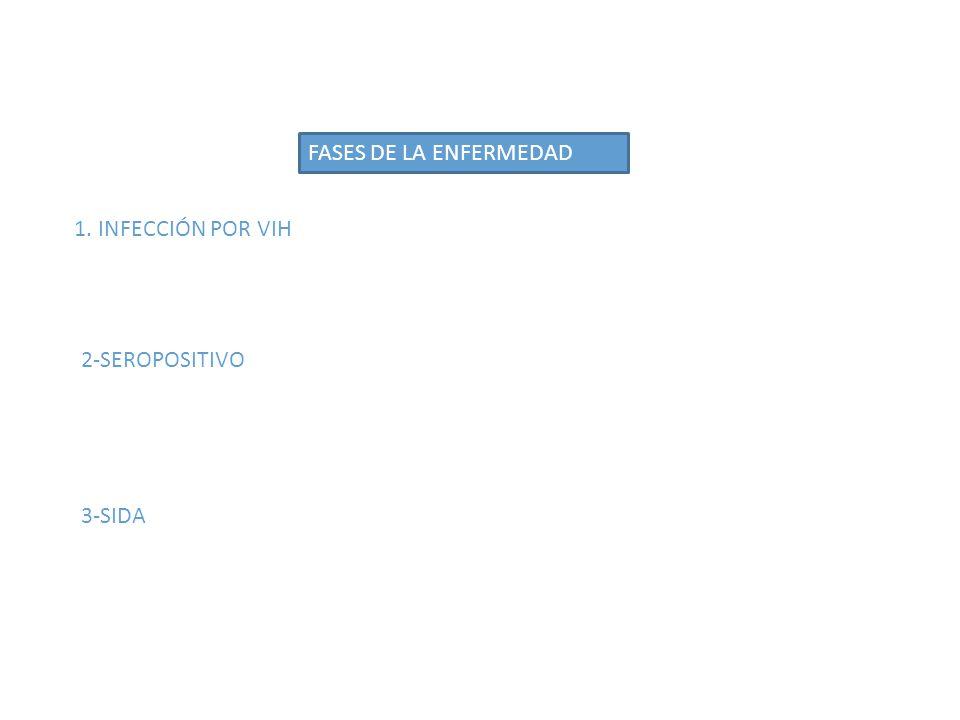 FASES DE LA ENFERMEDAD 1. INFECCIÓN POR VIH 2-SEROPOSITIVO 3-SIDA